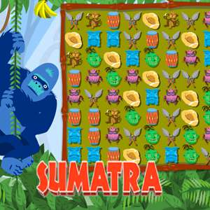 AARP Connect's online Sumatra game