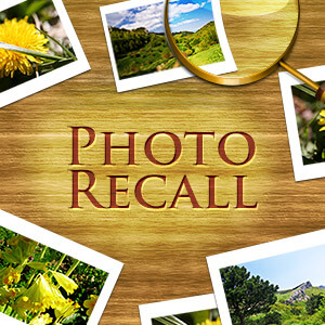 AARP Connect's online Photo Recall game